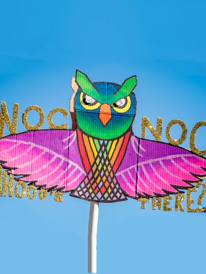 Peep These Awesome Nocturnal Wonderland 2017 Totems
