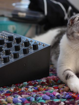 DJs Love Pussy