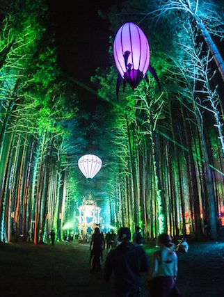 11 Must-See Acts at Electric Forest 2015