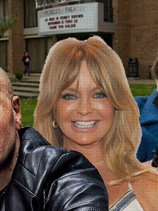 Test Your Knowledge: 20 Facts About Goldie