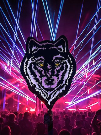 Gallery: Best Totems of Nocturnal Wonderland 2016