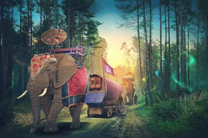 Electric Forest 2017 Tickets Go on Sale November 2016