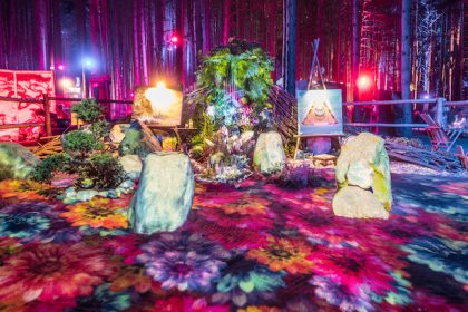 Announcing the Installation Artist Lineup for Electric Forest 2017