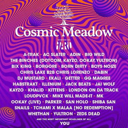 Hear HARD in Action at cosmicMEADOW With This EDC Las Vegas 2018 Playlist