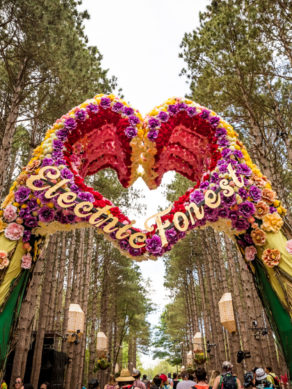 Get Awe-Struck by These Sherwood Forest Shots From Electric Forest 2018