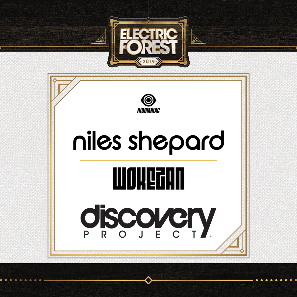 Meet the Selected Artists Playing at Electric Forest 2019