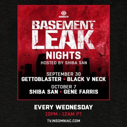 Shiba San: Basement Leak Nights