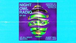 night owl radio 300