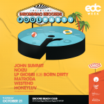 Insomniac Records Pool Party
