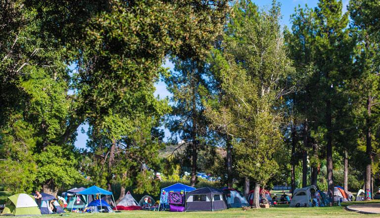 Camping Header