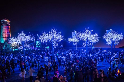 Headliners gather under glowing trees