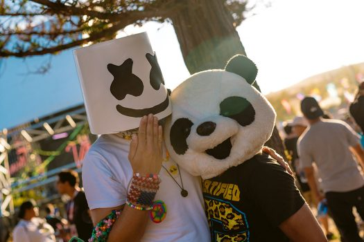 Headliners in Marshmello and panda masks