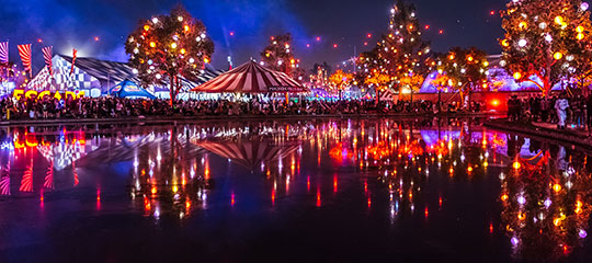 Lights reflecting on the pond