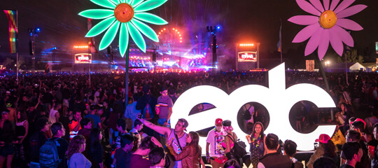 EDC Mexico sign with neon flowers