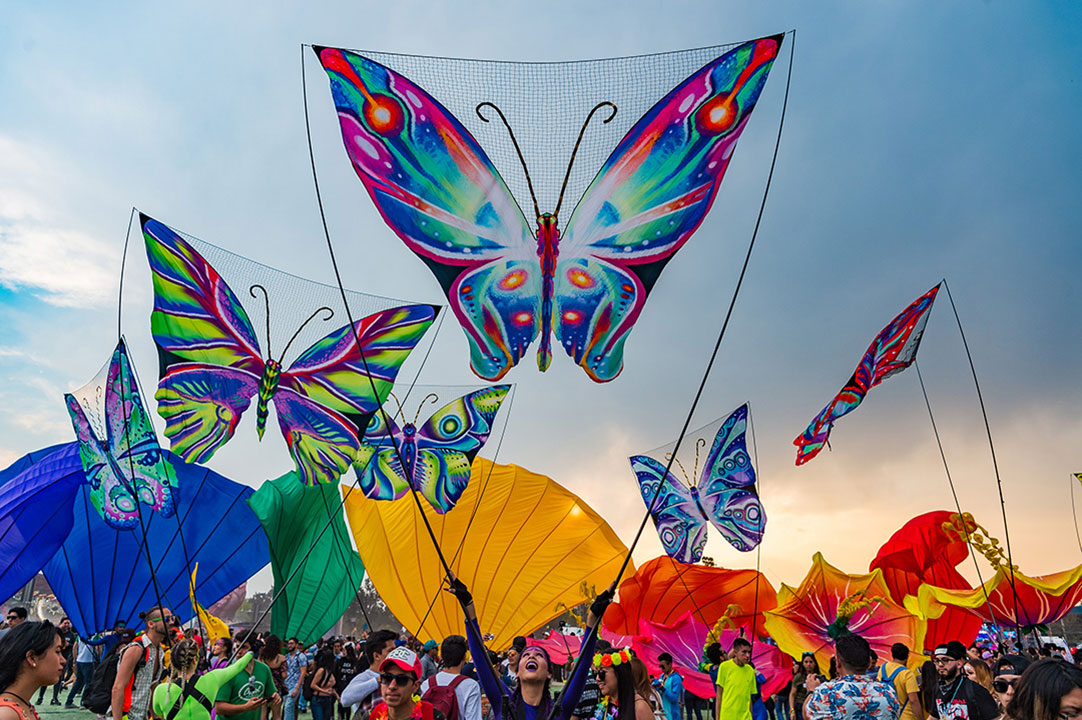 Butterfly puppets above the crowd