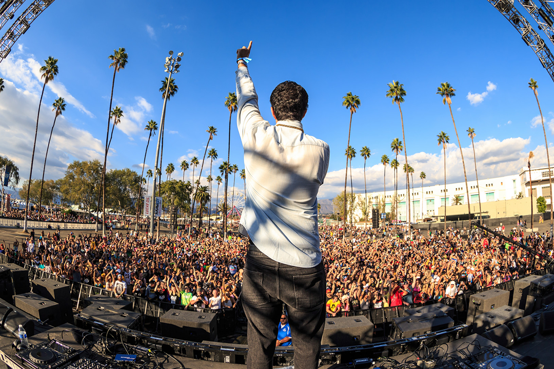 A DJ and palm trees