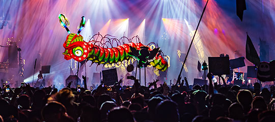 Caterpillar puppet over the crowd