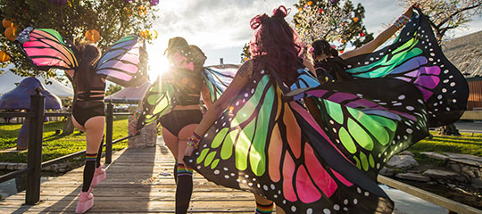 Women in butterfly wings