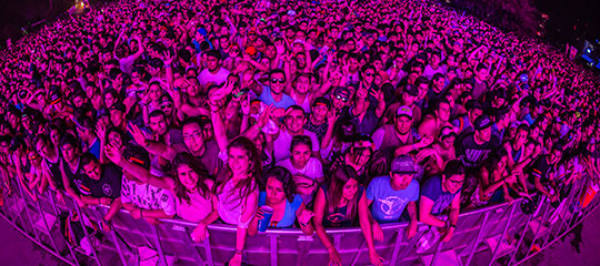 A crowd under purple light