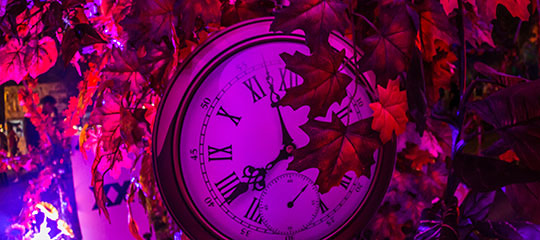 A clock and leaves