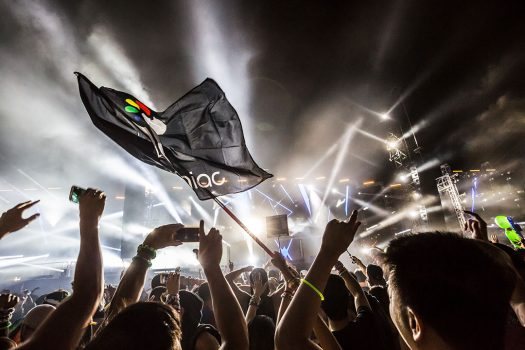Insomniac flag waving over the crowd at Beyond Wonderland SoCal 2015