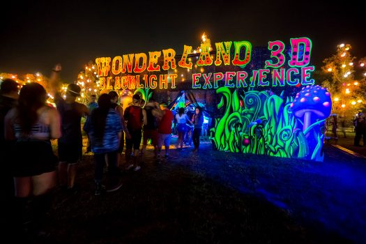 The Wonderland 3D Blacklight Experience at Beyond Wonderland SoCal 2015
