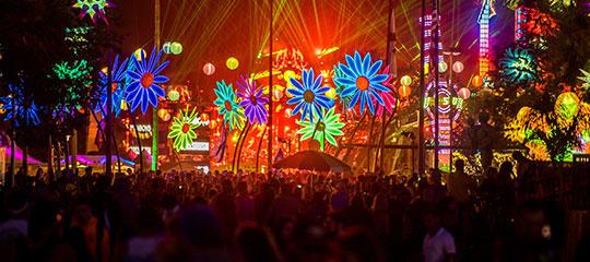 Glowing daisies at EDC Orlando