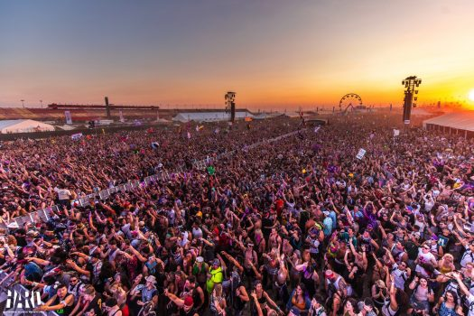 A packed crowd at sunset